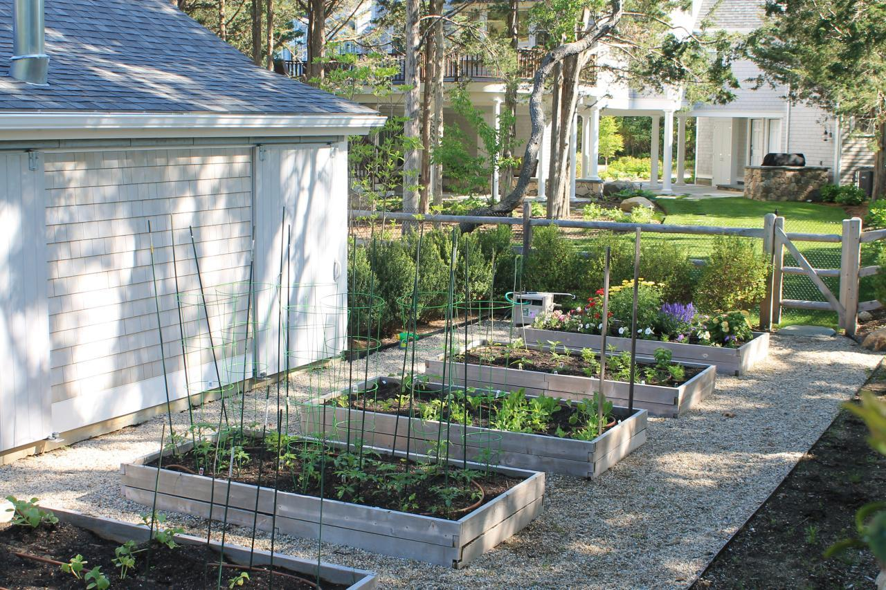 Our Garden Beds And Containers Are Packed With The Best Herbs, Veggies,  Fruits, And Berries. But, Not All Gardens Have Access To Full Sun.